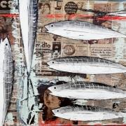 Fish_40