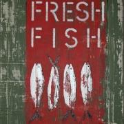 FRESH FISH 1